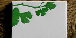 Ginkgo Stationery